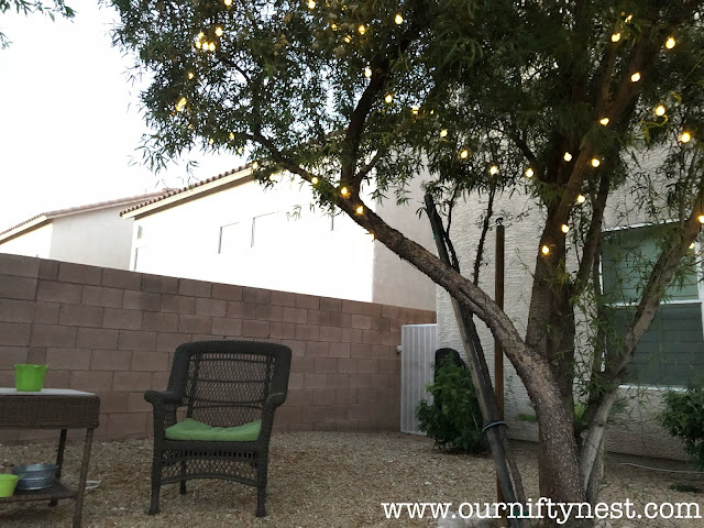 budget backyard refresh - solar lights
