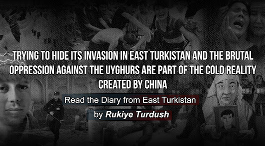 My Travel Journal and Todays East Turkistan