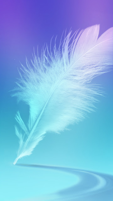 Feather Wallpaper Sony Xperia X Performance