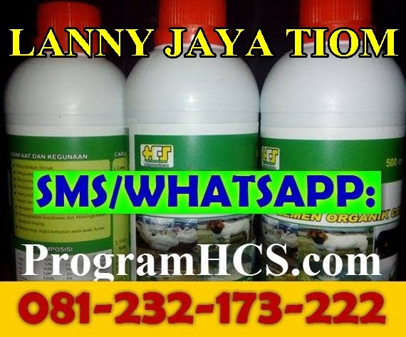 Jual SOC HCS Lanny Jaya Tiom