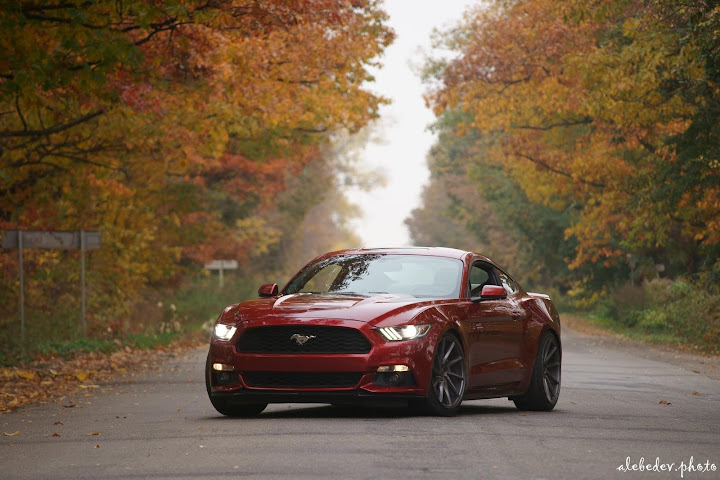 red ford mustang eibach