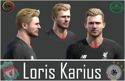 Pes 2013 Loris Karius face by Alireza11