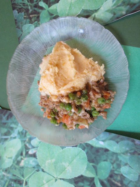 Easy Turkey Shepherd's Pie Recipe