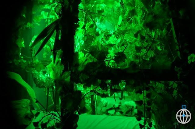 zielono dali