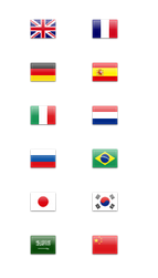 Easly Add Translate Widget To Page Blog With State Flag