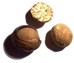 nutmeg(jaifal) benefits in urdu