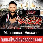 http://www.humaliwalayazadar.com/2016/09/muhammad-hussain-mehdi-nohay-2017.html