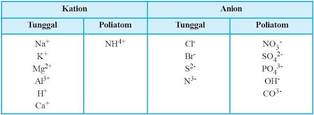 Ion tunggal dan poliatom