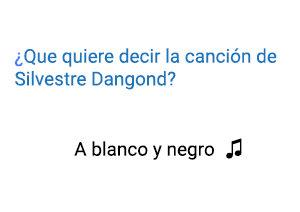 Significado de la canción A Blanco y Negro Silvestre Dangond.