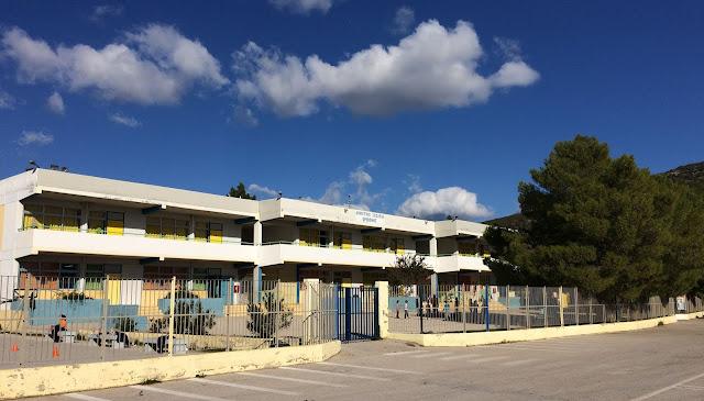 Δωρεάν μανταρίνια στους μαθητές του Δημοτικού Σχολείου Ερμιόνης