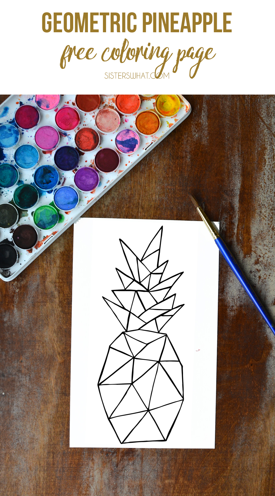 Geometric pineapple free coloring page