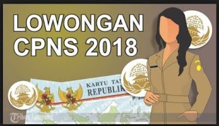 Penerimaan Calon Pegawai Negeri Sipil CPNS 2018 Menggunakan Tes Kejujuran