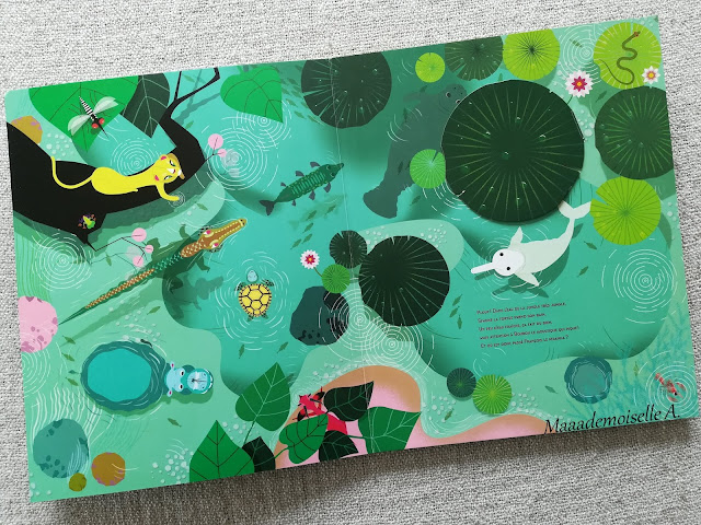 || Le livre de la jungle très jungle (Présentation & Avis)(Chut, les enfants lisent # 103)