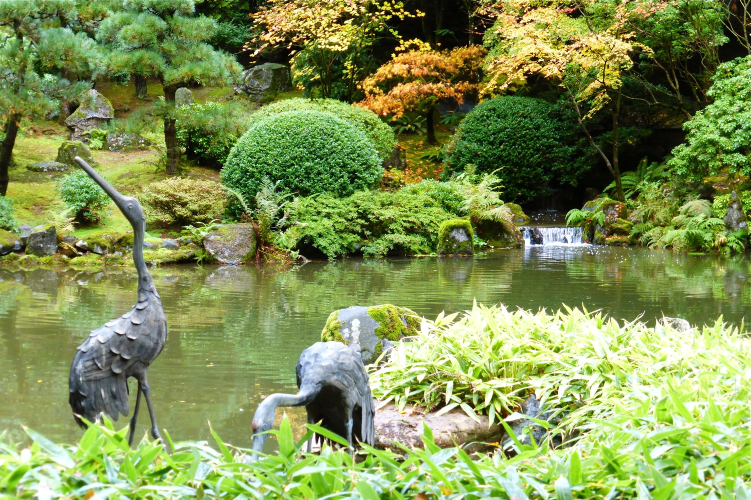 Lower Pond of the Strolling Pond Garden Portland Japanese Garden, stone cranes in Portland Japanese Garden