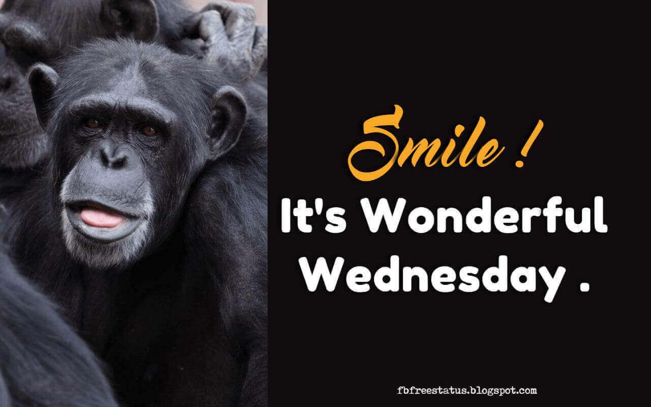 Smile, It's Wonderful Wednesday.