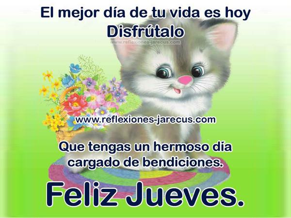 Feliz Jueves. El mejor día de tu vida es hoy, disfrútalo. Que tengas un hermoso día cargado de bendiciones.