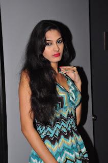 Actress Shweta Jadhav Pictures at Spa Ceylon Luxury Ayurveda Curtain Raiser  0033
