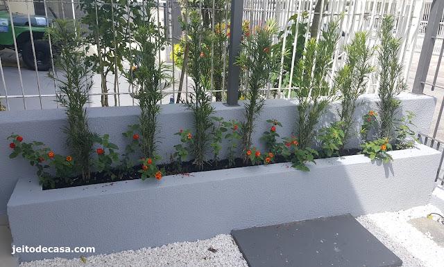 podecarpos-no-jardim