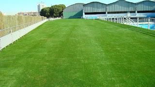 hierba artificial piscina