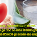 Here you drink aloe vera juice and enjoy the amazing results This is the best cure to cure diseases Keeps