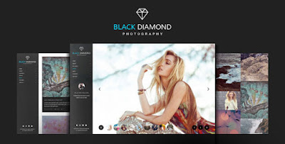 Download Creative DIAMOND v1.7 Photography WP Theme