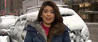 tormenta de nieve paraliza el Noreste del Los Estados Unidos