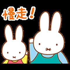 Miffy的家人聊天貼圖
