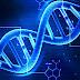 İnsan DNA'sı İle Ortaklıklar