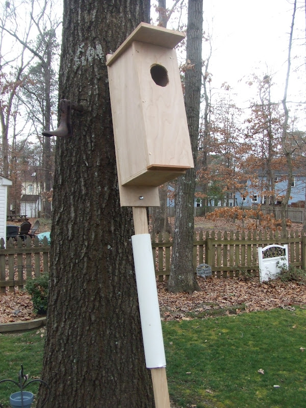 Just a lovin spoonful Making a wood duck house