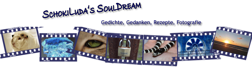 SchokiLuda's SoulDream