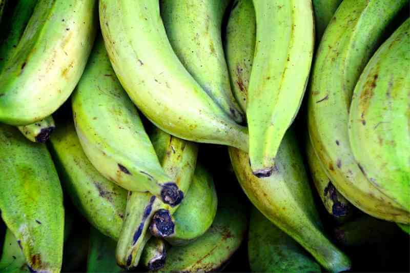 The Benefits of Bananas With Different Degrees of Ripeness