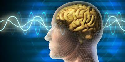 kecerdasan otak