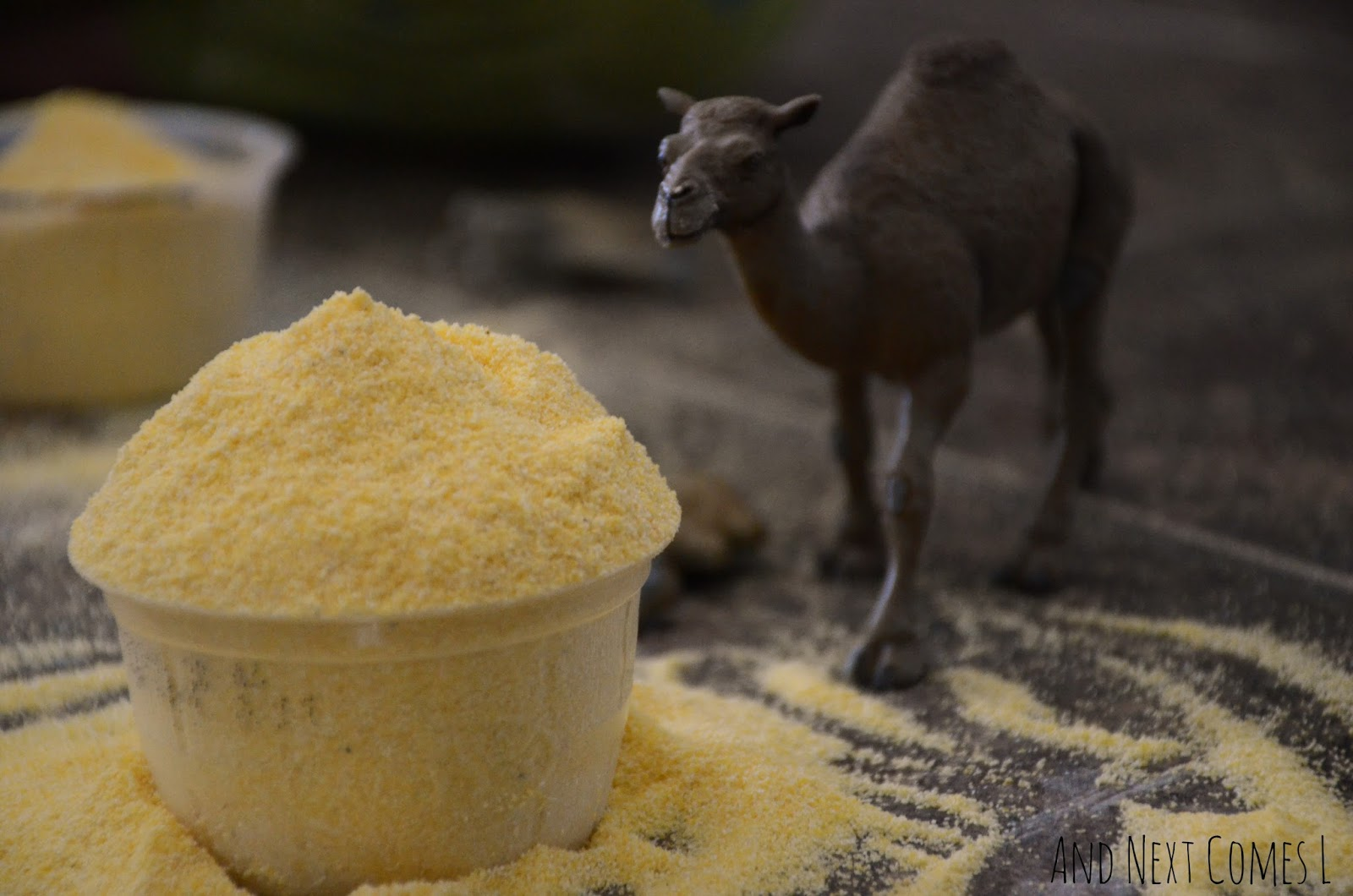Close up of cornmeal and a camel from And Next Comes L