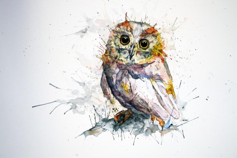 09-Owl-Philipp-Grein-Animal-Paintings-in-Splashes-of-Color-www-designstack-co