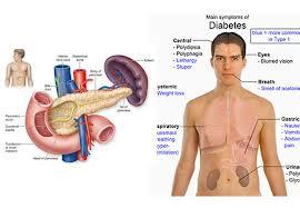 Tips Kesehatan untuk Diabetes Melitus
