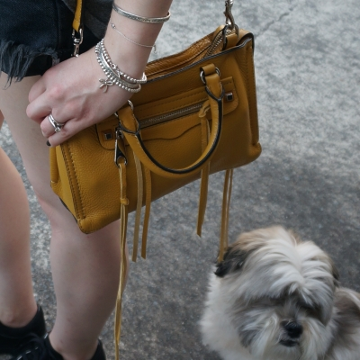 OneTeaspoon Hawks shorts in Fox black, Rebecca Minkoff micro Regan satchel in Harvest Gold | AwayFromTheBlue