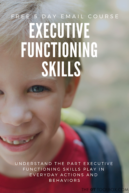 Executive functioning skills course for understanding executive function skills in kids.