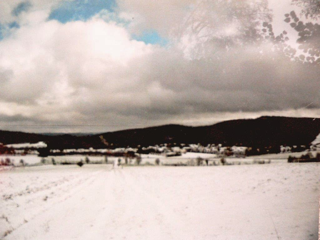 Schnee Winter Eifel Analog Foto