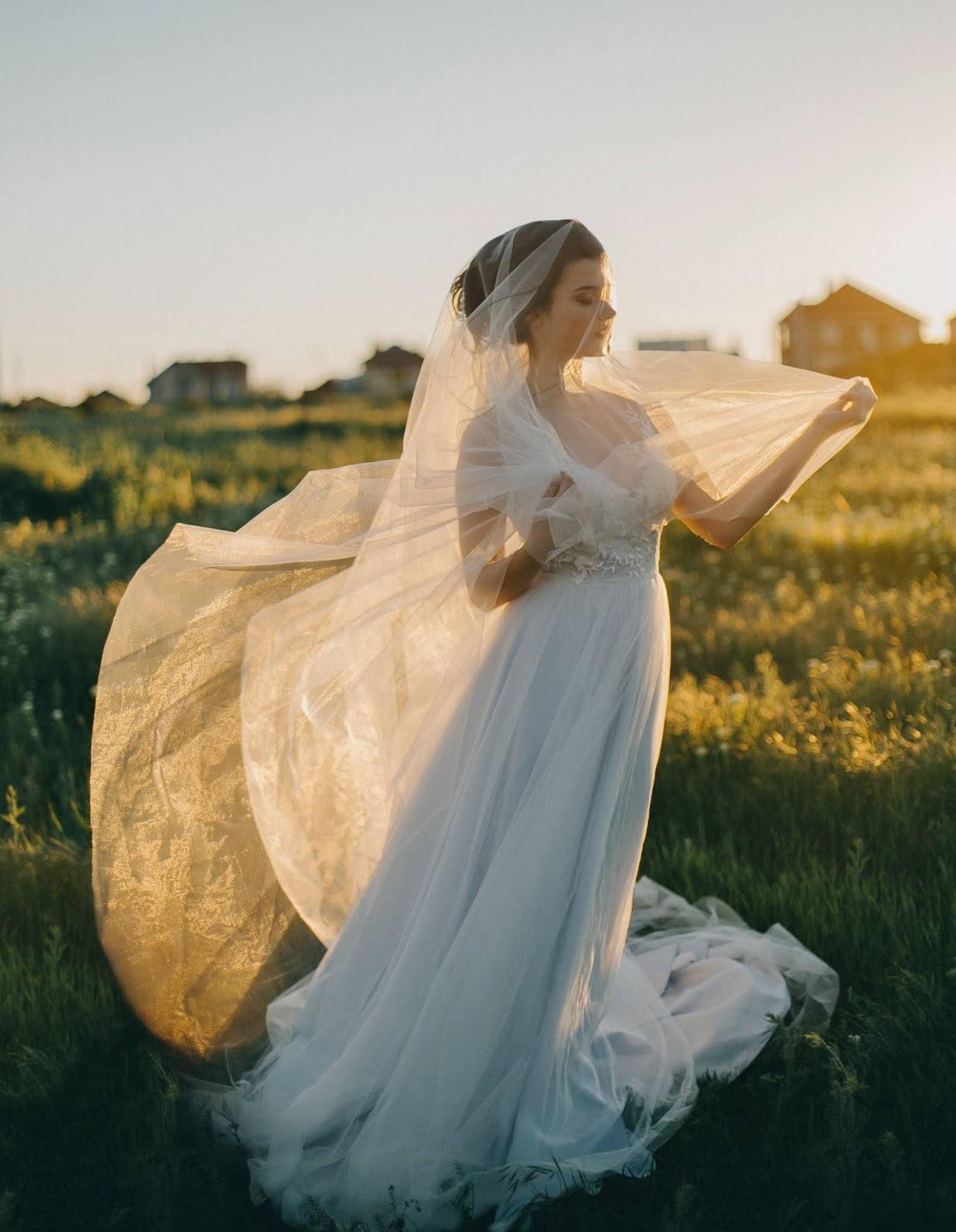 богатый цвет обработки свадебных фото травянистое многолетнее растение