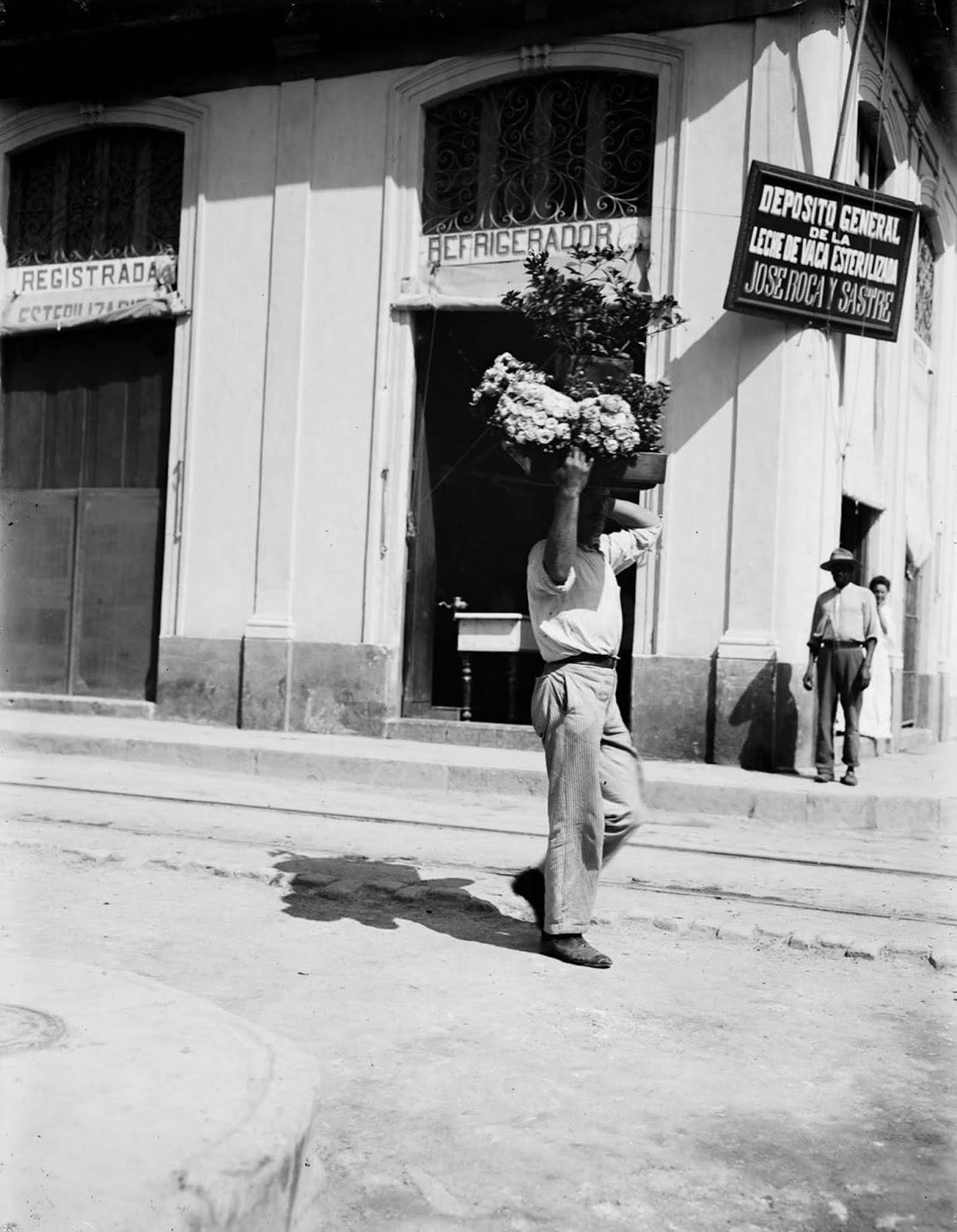A flower vendor. 1890.
