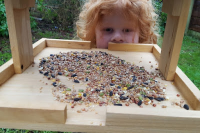 Wild Bird Table review from Wilko