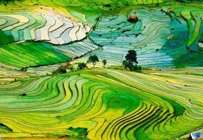 Only with 15 photos makes you immediately want to come in Sapa