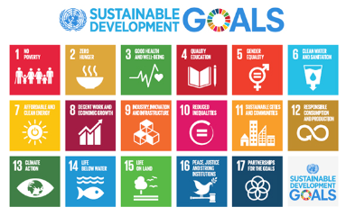 http://www.undp.org/content/undp/fr/home/sustainable-development-goals.html