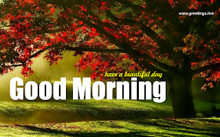 Good morning landscape tree greetings image