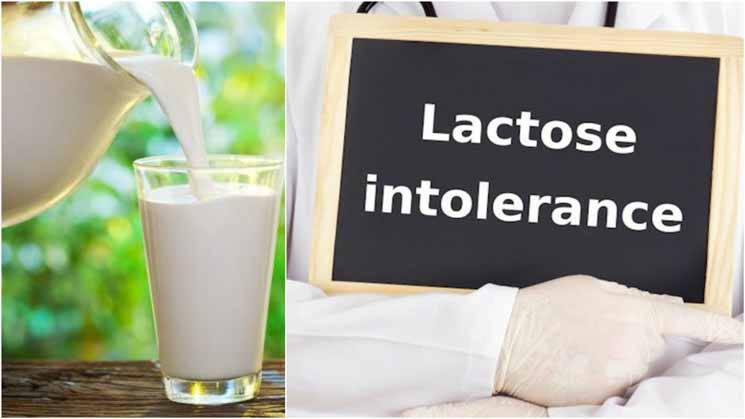 Kenali Perbedaan Alergi Susu Sapi Vs Intoleransi Laktosa