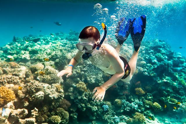 Những địa điểm lặn ngắm san hô tuyệt đẹp ở Đà Nẵng L%25E1%25BA%25B7n%2Bng%25E1%25BA%25AFm%2Bsan%2Bh%25C3%25B4%2Bb%25C3%25A1n%2B%25C4%2591%25E1%25BA%25A3o%2Bs%25C6%25A1n%2Btr%25C3%25A0