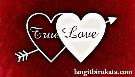 Cinta sejati dalam kalimat