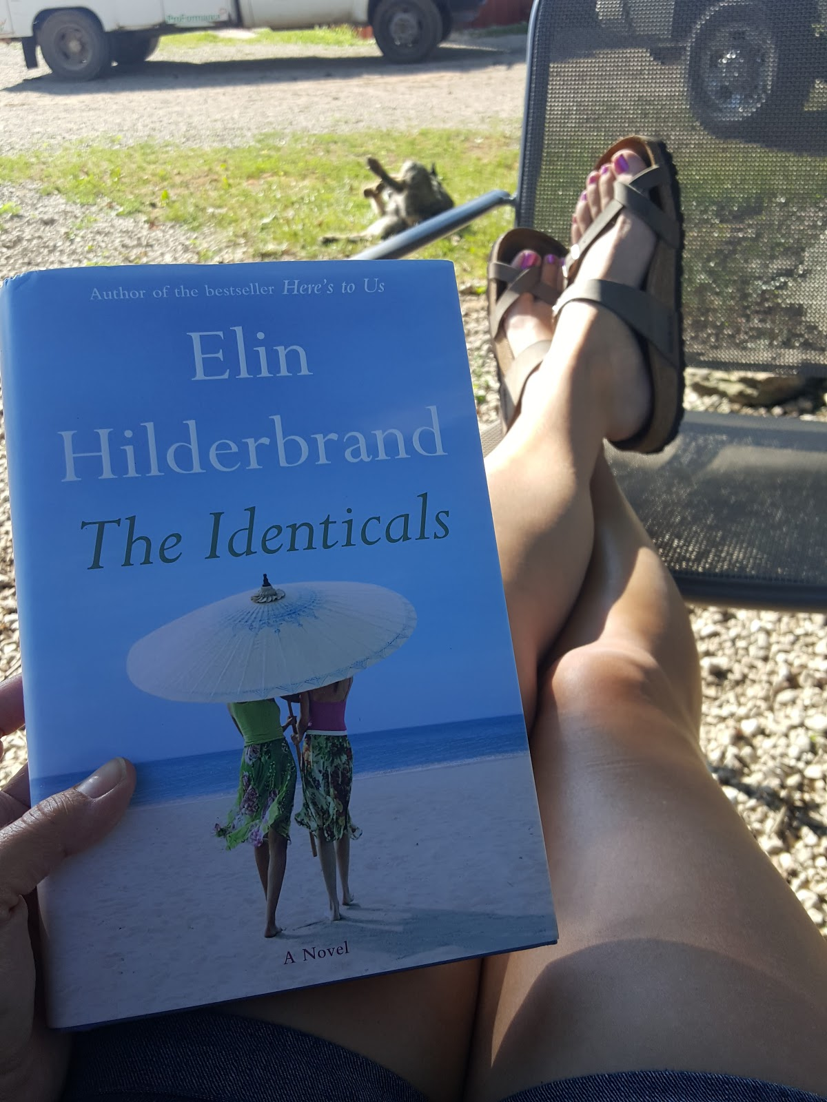 Elin Hilderbrnad The Identicals