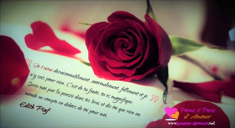 image d'une citation d'amour d'Edith Piaf : 70. Je t'aime déraisonnablement, anormalement, follement et je n'y suis pour rien. C'est ...