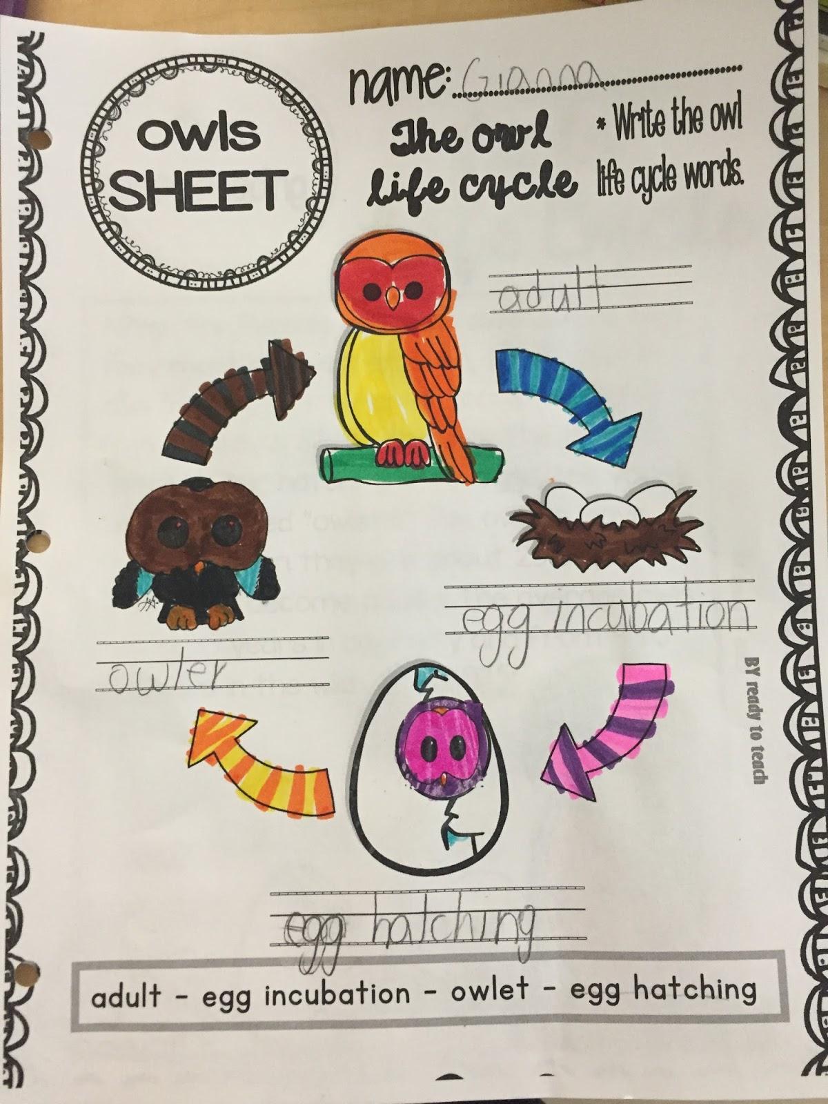 Miss Vanchu S Classroom Blog Second Grade Goes Batty